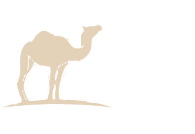 Siloutte of a camel