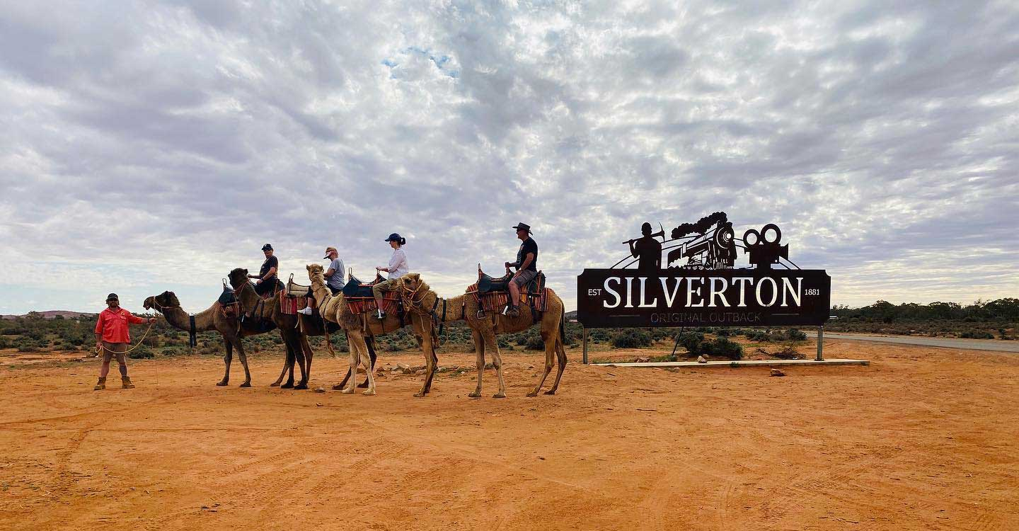 Silverton Camels