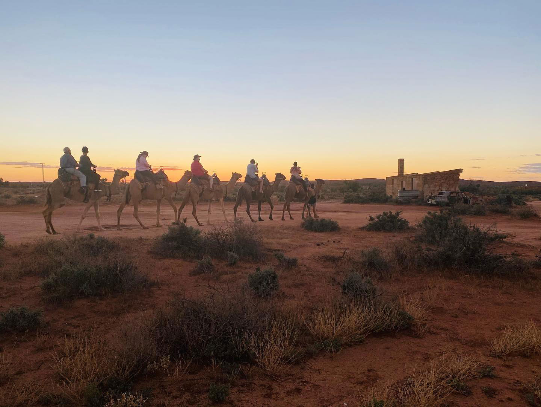 Book Camel Tour Online